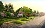 西安道路綠化26#-道路綠化