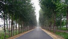 北京四級公路2#